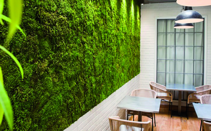 La parete vegetale di Linfadecor